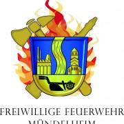 FFM-logo